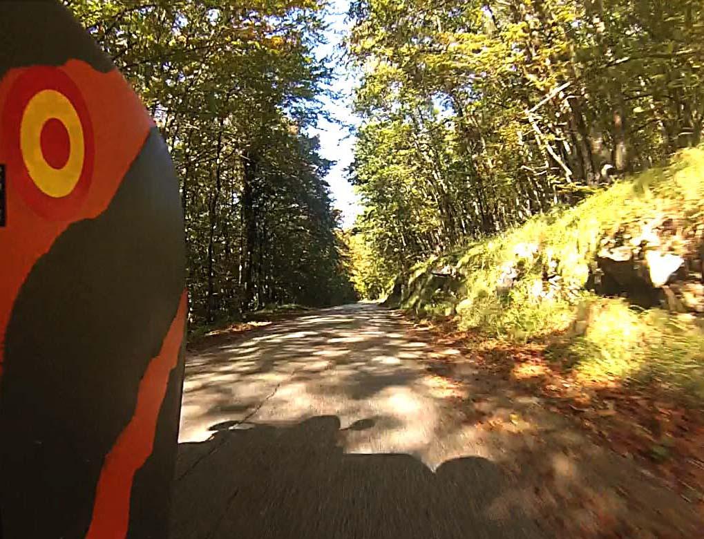 Apenas 15 kms. de bosque esloveno, entre otros.